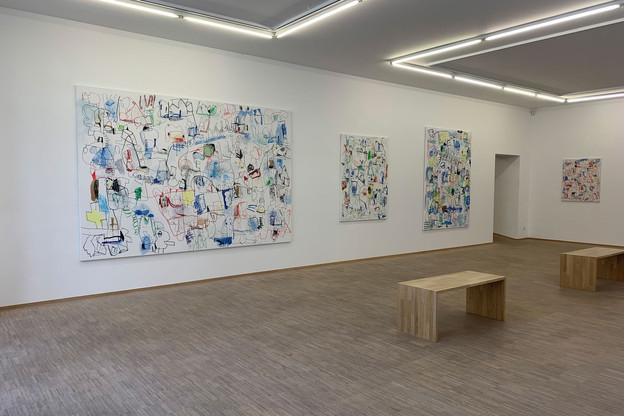 Vue de l'exposition de JanVoss par la galerieLelong & Co. chez Nosbaum Reding. (Photo: Nosbaum Reding)