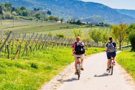 En plus des pistes qui sont déjà dédiées au vélo, 16 tronçons seront prioritairement réservés aux amateurs de la petite reine cet été. (Photo: Shutterstock)