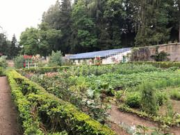 Un beau jardin potager et floral se déploie à l'arrière. ((Photo: Paperjam))