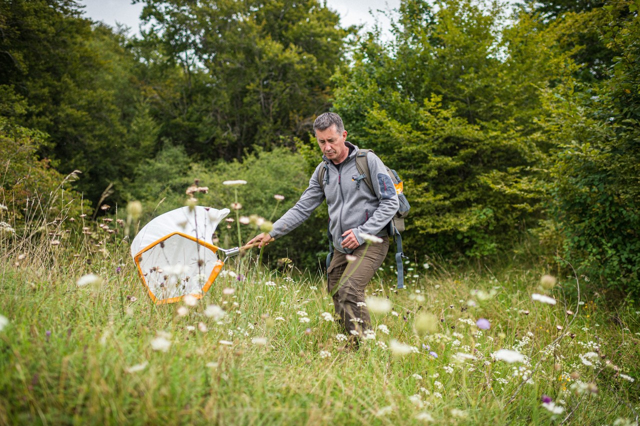 L'entomologiste Raoul Gerend, à Roudebierg, avec un filet pour ramasser les insectes à la surface des plantes. (Photo: Mike Zenari/Maison Moderne)