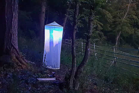 La tente légère que Gerend utilise pour attirer les mites. (Photo: DR)