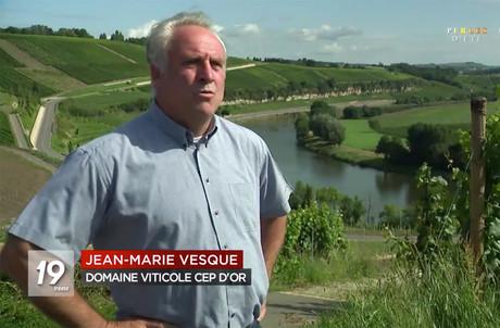 La RTBF est allée à la rencontre d'un viticulteur indépendant, Jean-Marie Vesque (Domaine viticole Cep d'Or). (Illustration: Capture d'écran/RTBF)