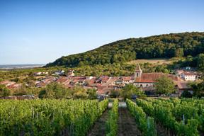 Beilstein, en Allemagne, ou Lucey, en France, sont eux aussi une partie intégrante de Via Mosel', qui se joue des frontières pour mettre en valeur le terroir de la Grande Région.                               ((Photo: Christopher Arnoldi))