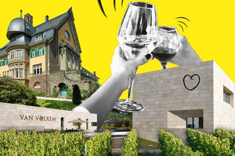 Le projet transfrontalier Via Mosel' va permettre de découvrir le terroir viticole de la Moselle dans les trois pays qu'elle traverse, au fil de ses quatre appellations et avec l'architecture comme trait d'union. (Design: Sascha Timplan/Maison Moderne)