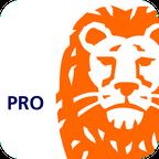ING Pro